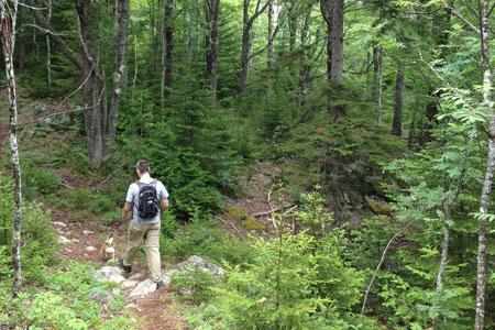 Pigeon Hill in Steuben Maine