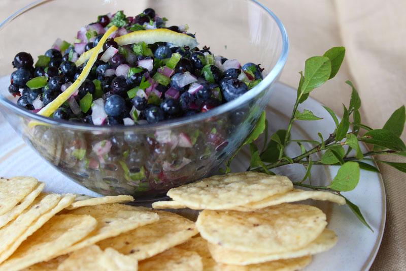 Wild Blueberry Salsa