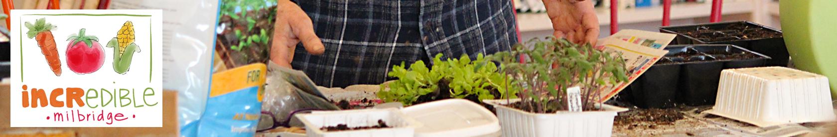 IEM Garden Workshops and Tours