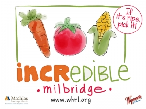 Incredible Edible Milbridge Signs