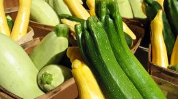 Baskets of fresh, organic green and yellow squashes at the farmer's market.